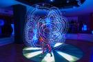 Hewlett Packard uv show 2013